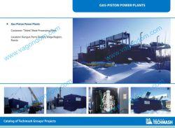Gas-Piston Power Plant