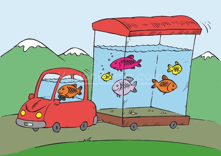 Вагон-дом аквариум