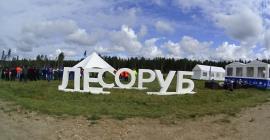 Выставка Лесоруб 21 века